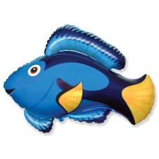 Шар (22''/56 см) Фигура, Рыба, Голубой, 1 шт.