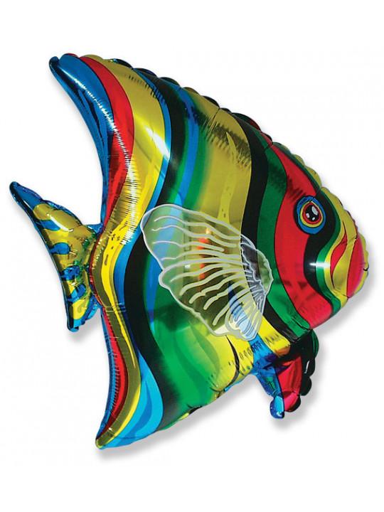 Шар (26''/66 см) Фигура, Тропическая рыбка, 1 шт.